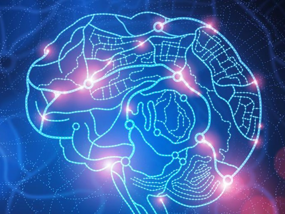 нейробіологія-семінар